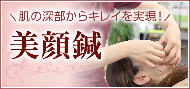 美顔鍼ページ